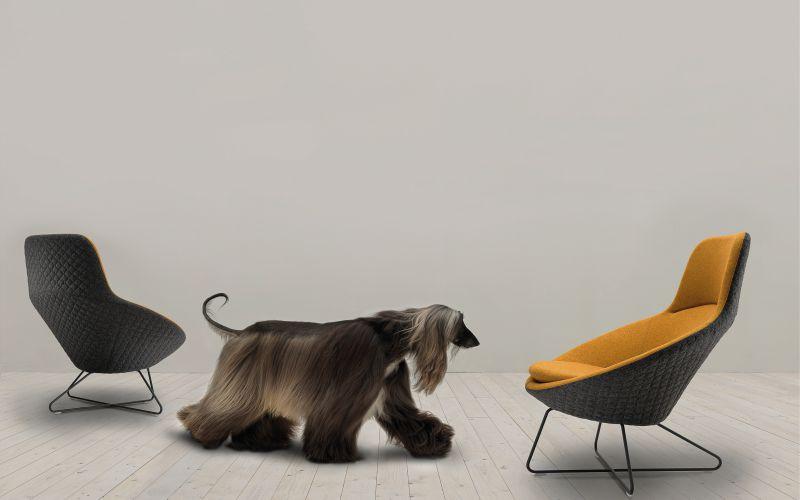 Lựa chọn ghế văn phòng hiện đại cho không gian làm việc